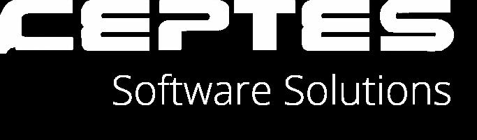 Pitch Deck Services_Client_Software company